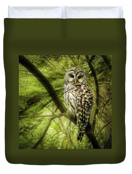 Radiating Barred Owl Duvet Cover