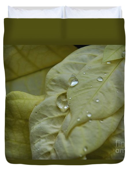 Rain Drops On A  White Poinsettia Duvet Cover