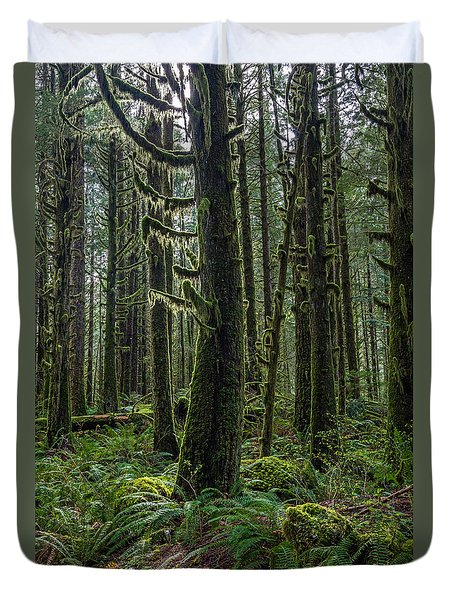 Rain Forest Of Golden Ears Duvet Cover