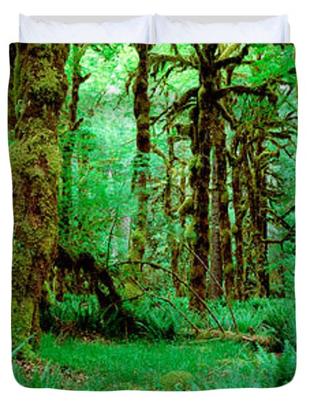 Rain Forest, Olympic National Park Duvet Cover
