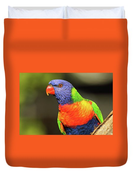 Rainbow Lorikeet Portrait Duvet Cover