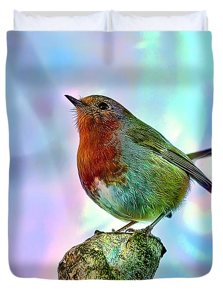 Rainbow Robin Duvet Cover