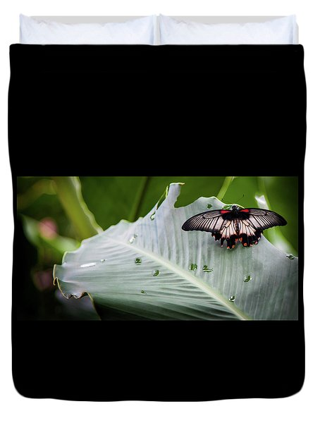 Duvet Cover featuring the photograph Raining Wings by Karen Wiles