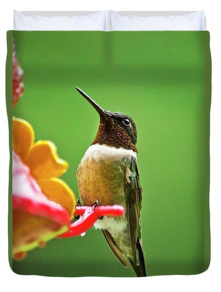 Rainy Day Hummingbird Duvet Cover by Christina Rollo