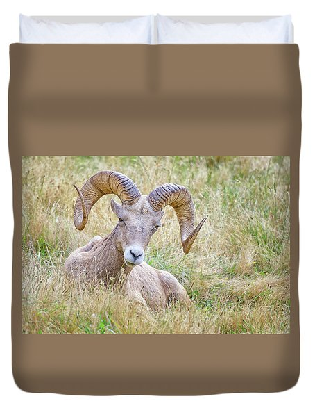 Ram In Field Duvet Cover