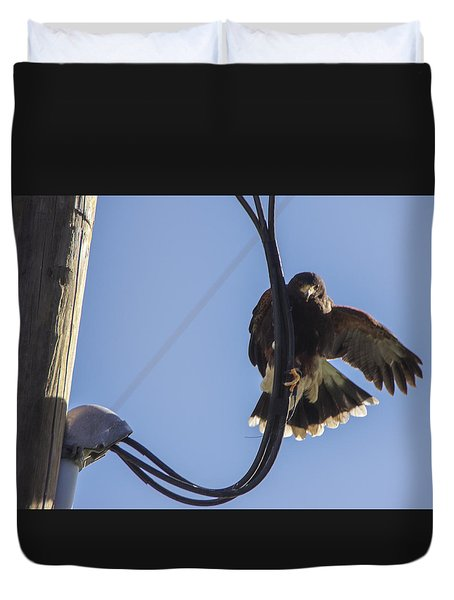 Duvet Cover featuring the photograph Ramona Hawk 8 by Phyllis Spoor