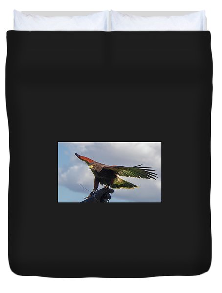 Duvet Cover featuring the photograph Ramona Hawk Watch 3 by Phyllis Spoor