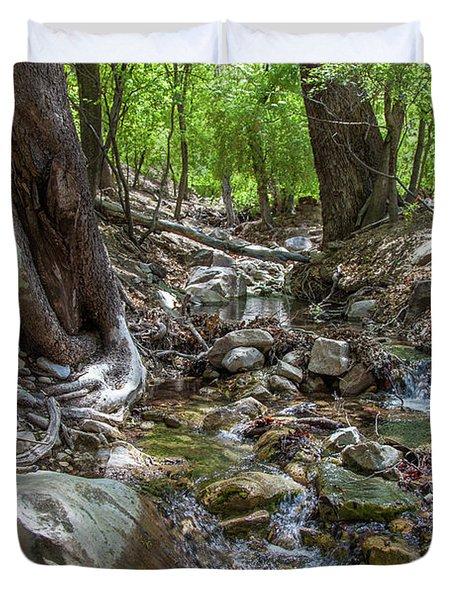 Ramsey Canyon Preserve Duvet Cover