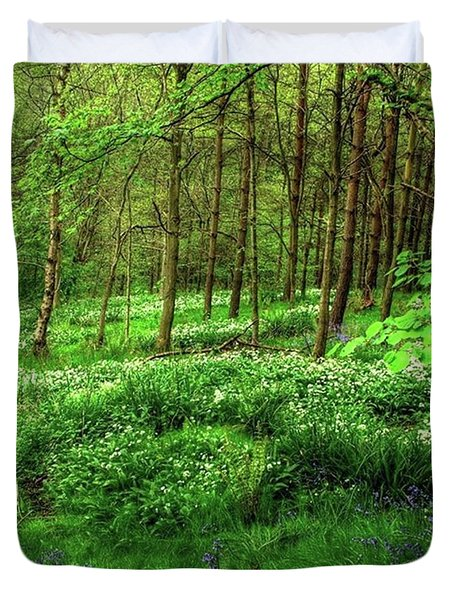 Ramsons And Bluebells, Bentley Woods Duvet Cover by John Edwards