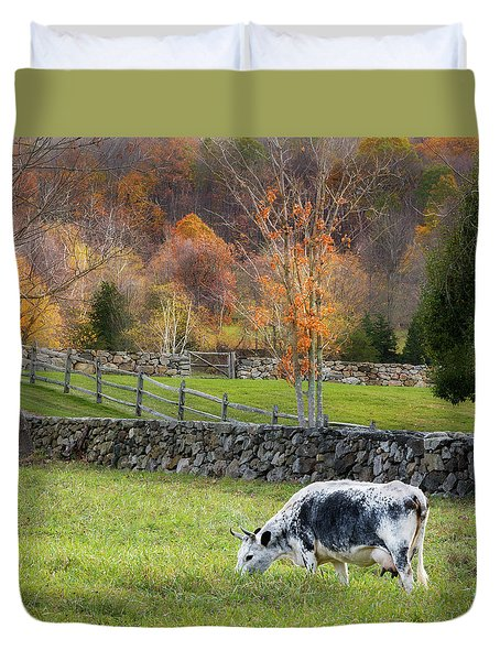 Duvet Cover featuring the photograph Randall Cattle Cow Square by Bill Wakeley