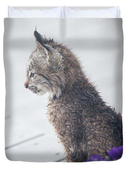 Profile In Kitten Duvet Cover