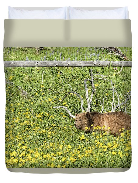 Raspberry, Sow Grizzly Duvet Cover