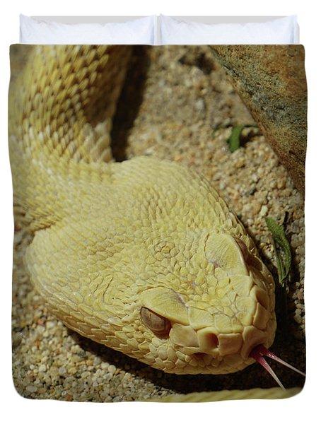 Rattlesnake Closeup Duvet Cover