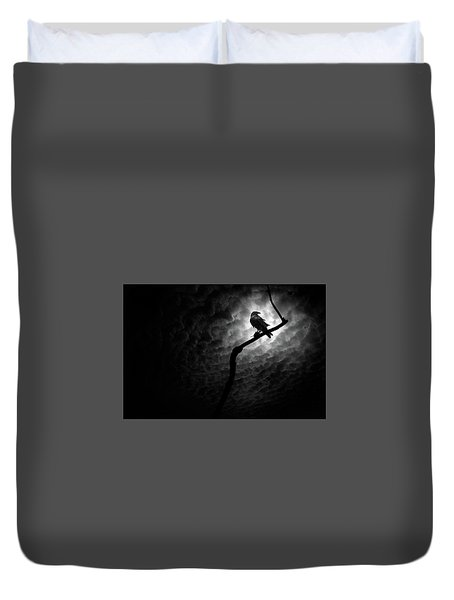 Raven, Death Valley Duvet Cover by Marius Sipa