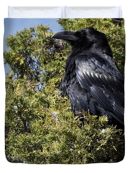 Raven In A Juniper At Bryce Duvet Cover