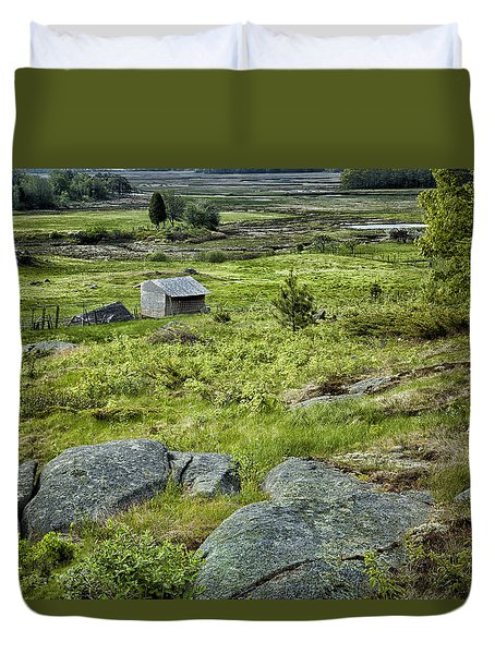 Ravine Pasture Duvet Cover by Denis Lemay