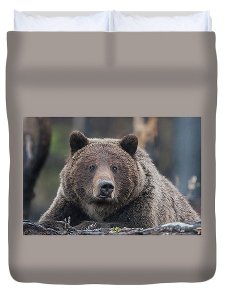 Raw, Rugged And Wild- Grizzly Duvet Cover