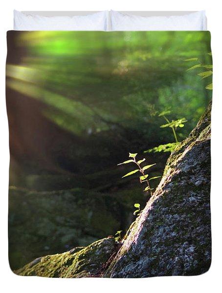 Rays Duvet Cover