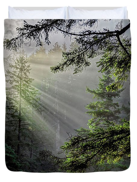 Morning Rays Through An Oregon Rain Forest Duvet Cover