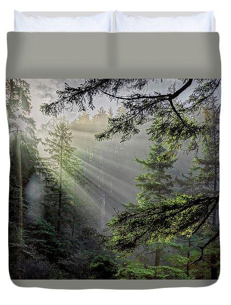 Rays Through An Oregon Rain Forest Duvet Cover