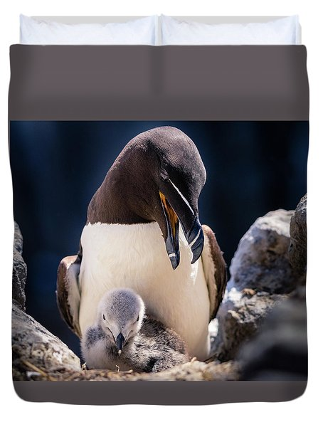 Razorbill With Chick, Farne Islands Duvet Cover