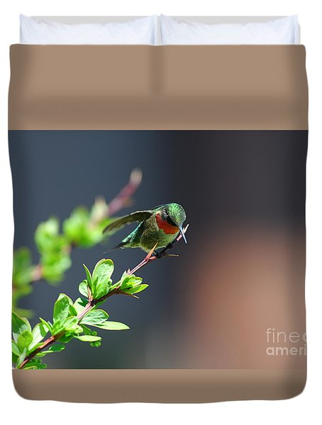 Duvet Cover featuring the photograph Ready For Take-off by Sandra Updyke