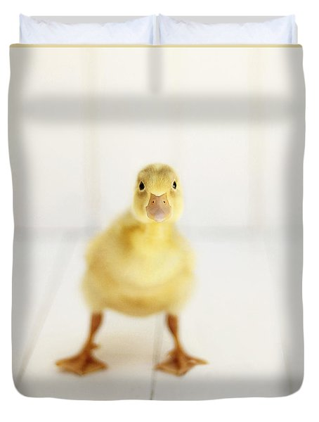 Ready To Rumble - Square Version Duvet Cover by Amy Tyler