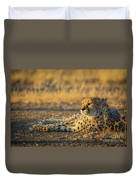 Reclining Cheetah Duvet Cover by Inge Johnsson