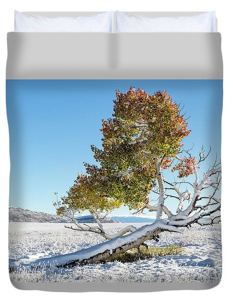 Reclining Tree With Snow Duvet Cover