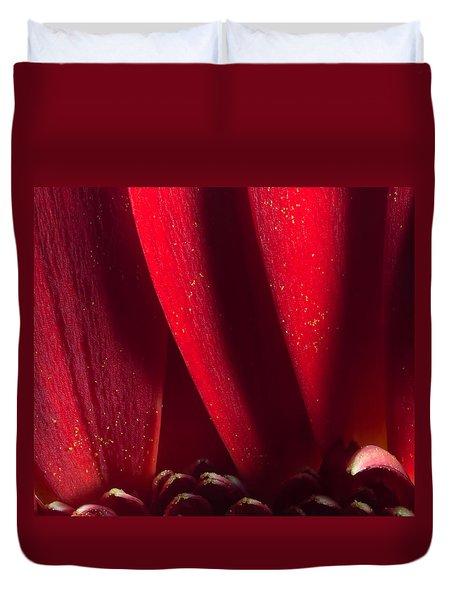 Golden Pollen Red Chrysanthemum Duvet Cover by John Williams