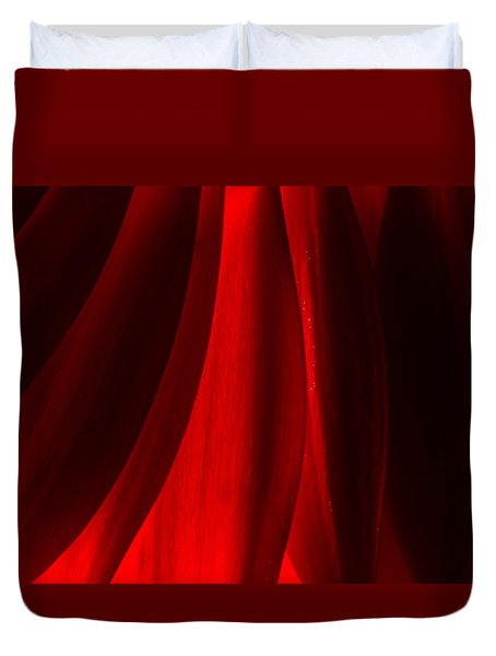 Red Abstract Of Chrysanthemum Wildflower Duvet Cover by John Williams