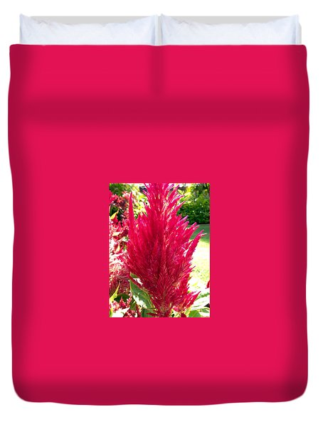 Red Duvet Cover by Alohi Fujimoto