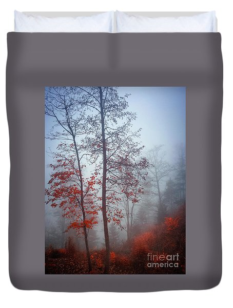 Duvet Cover featuring the photograph Red And Blue by Elena Elisseeva