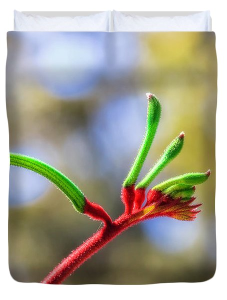 Red And Green Kangaroo Paw, Kings Park Duvet Cover