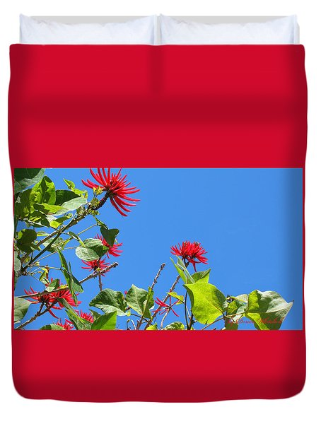 Red And Green San Diego Flowers Duvet Cover by Doreen Whitelock