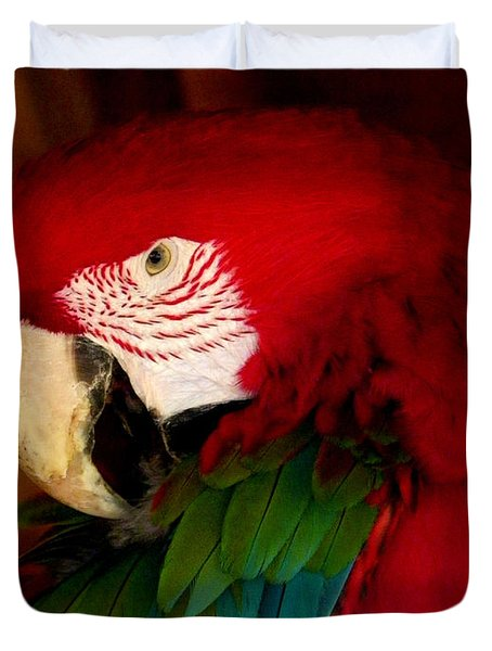 Red And Green Wing Macaw Duvet Cover