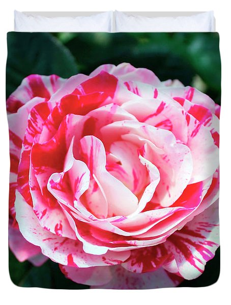 Red And Pink Floral Candy Rose Garden 490 Duvet Cover