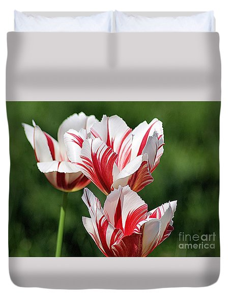 Duvet Cover featuring the photograph Red And White Stripes by John S