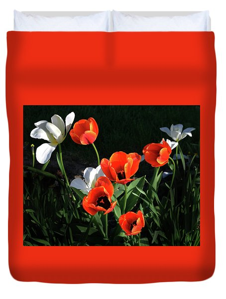 Duvet Cover featuring the photograph Red And White Tulips by Kathleen Stephens