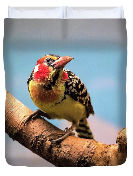 Red And Yellow Barbet Duvet Cover