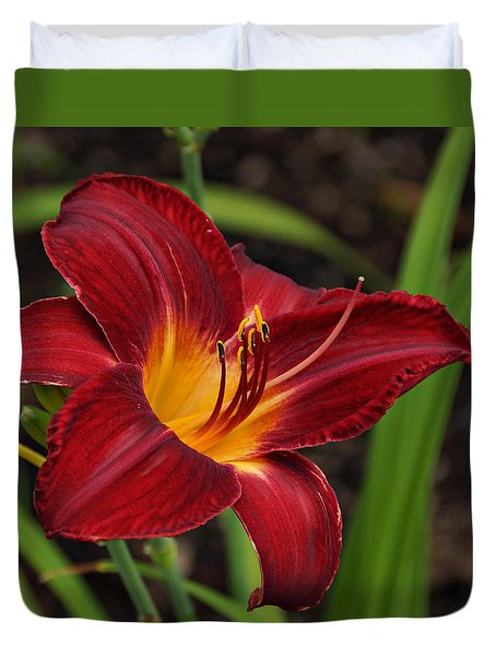 Red And Yellow Daylily Duvet Cover