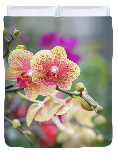 Duvet Cover featuring the photograph Red And Yellow Flower by Raphael Lopez