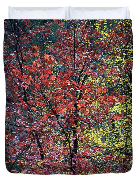 Red And Yellow Leaves Abstract Vertical Number 1 Duvet Cover by Heather Kirk