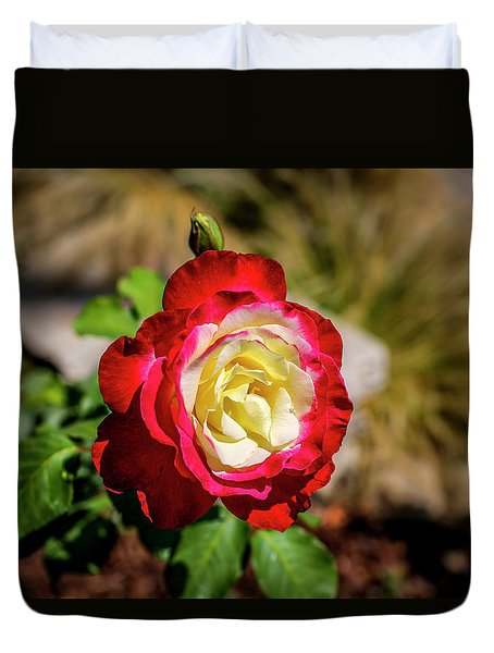 Red And Yellow Rose Duvet Cover