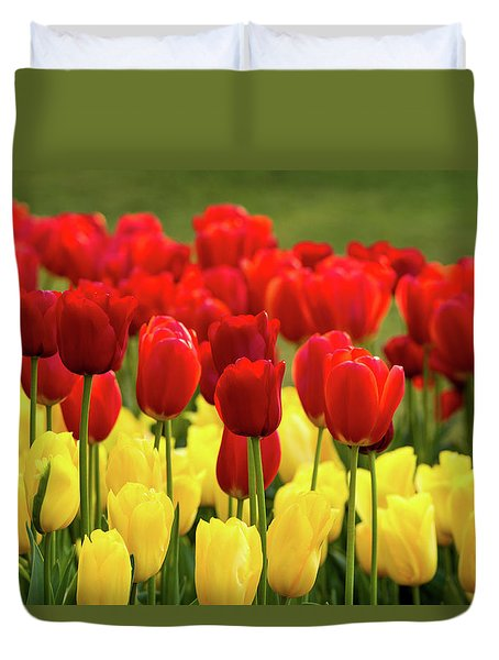Duvet Cover featuring the photograph Red And Yellow Tulips by Mary Jo Allen