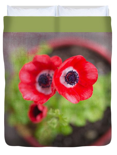 Red Anemones In Pot Duvet Cover by Rebecca Cozart