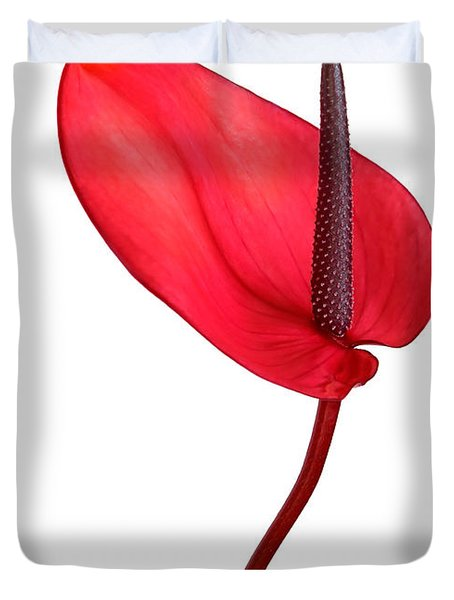 Red Anthrium Duvet Cover