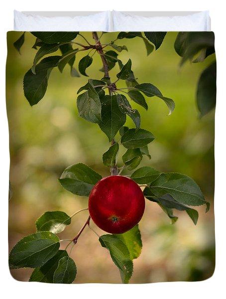 Red Apple Ready For Picking Duvet Cover