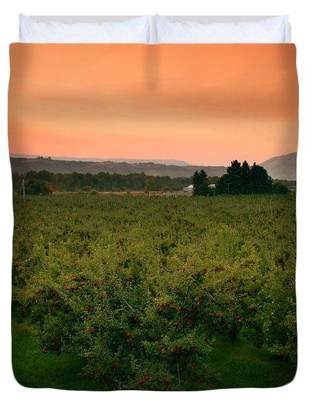 Red Apple Sunburst Duvet Cover