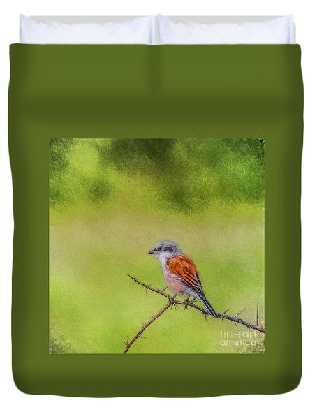 Red-backed Shrike Duvet Cover